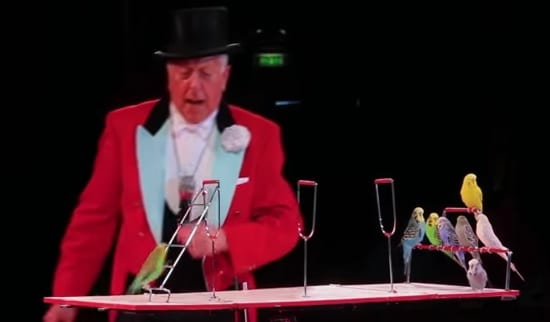 Norman Barrett, now 85, has worked with all the world's great circuses